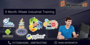 six weeks industrial training