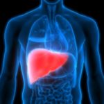 How We Can Boost Liver Functioning